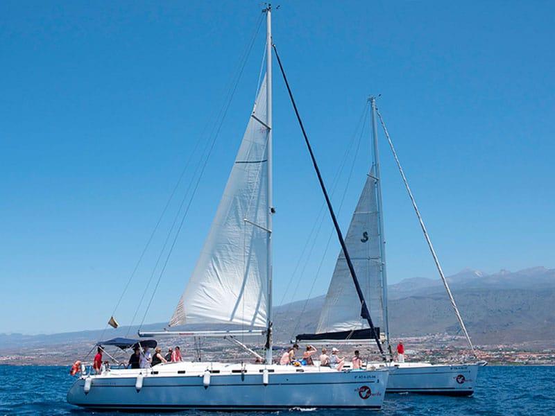 White-Tenerife-2